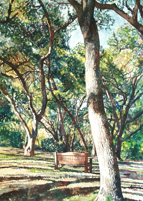 TREE & BENCH, ELYSE COHEN