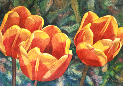 ORANGE TULIPS, ELYSE COHEN