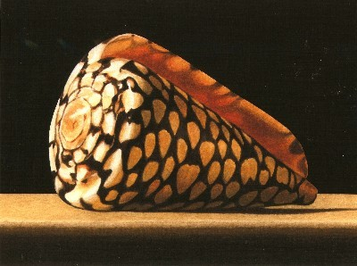 JOHN ARBUCKLE - MARBLE CONE - ARCHIVAL PRINT - 9.5 X 6.5