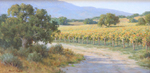 DAVE CHAPPLE - VINEYARD - OIL ON BOARD - 12 X 24