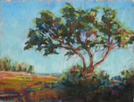 DORI DEWBERRY - THE MESA I - PASTEL - 16 x 12