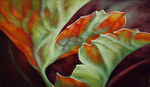 SHEILA EVANS - BREATH OF FIRE - PASTEL - 24 X 14
