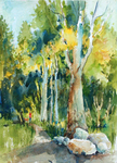 PETE ROBERTS - WALK IN THE WOODS - WATERCOLOR - 12 X 15
