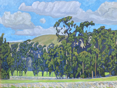 JOHN SAWYER - OLD EUCALYPTUS WINDBREAKS - OIL ON CANVAS - 40 X 30