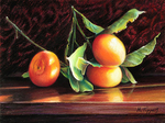 MARIE TIPPETS - TANGERINES IN WINTER LIGHT - PASTEL - 12 X 9
