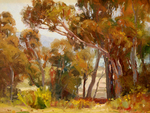 JIM WODARK - EUCALYPTUS BAY - OIL ON BOARD - 16 x 12
