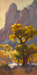 JIM WODARK - EVENING GLOW - OIL ON BOARD - 12 X 24